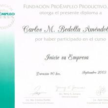 Pro-empleo-2003